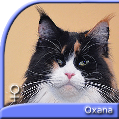 OXANA Special Agent*PL